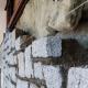 Tout sur l'isolation des murs en pierre